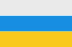 Флаг 2 зеленые полоски посередине белая. Настоящий русский флаг - бело-желто-черный! Чей флаг сине-жёлто-красный