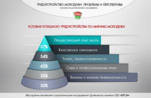Проблемы трудоустройства молодежи. Проблемы трудоустройства молодежи в россии