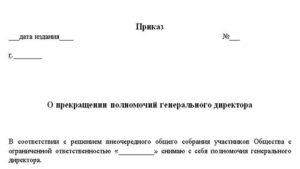 Заявление на увольнение от генерального директора образец. Увольнение руководителя ооо по собственному желанию