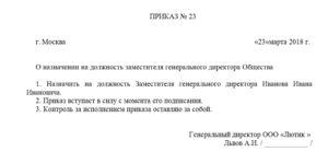 Приказ на заместителя директора с правом первой подписи образец. Приказ о назначении заместителя директора ооо