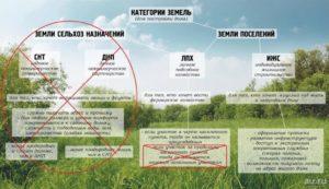 В чем разница ижс от лпх. ЛПХ и ИЖС – в чем разница и что лучше? Перевод земли в ЛПХ- или ИЖС-вид: порядок процедуры, необходимая документация и другое