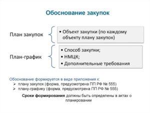Обоснование закупки хозяйственных товаров. Пример обоснования закупки
