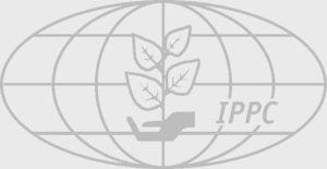 Международные стандарт фитосанитарным мерам мсфм 15.