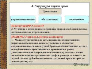 Общие нормы конституции рф примеры. Нормы права примеры из конституции